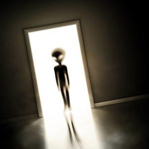Alien 1084 Canvas-taulu