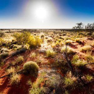 Australian Outback 776 Canvas-taulu