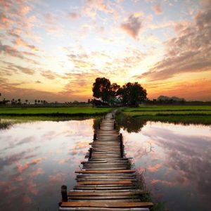 Burma 700 Canvas-taulu