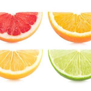 Citrus 480 Canvas-taulu